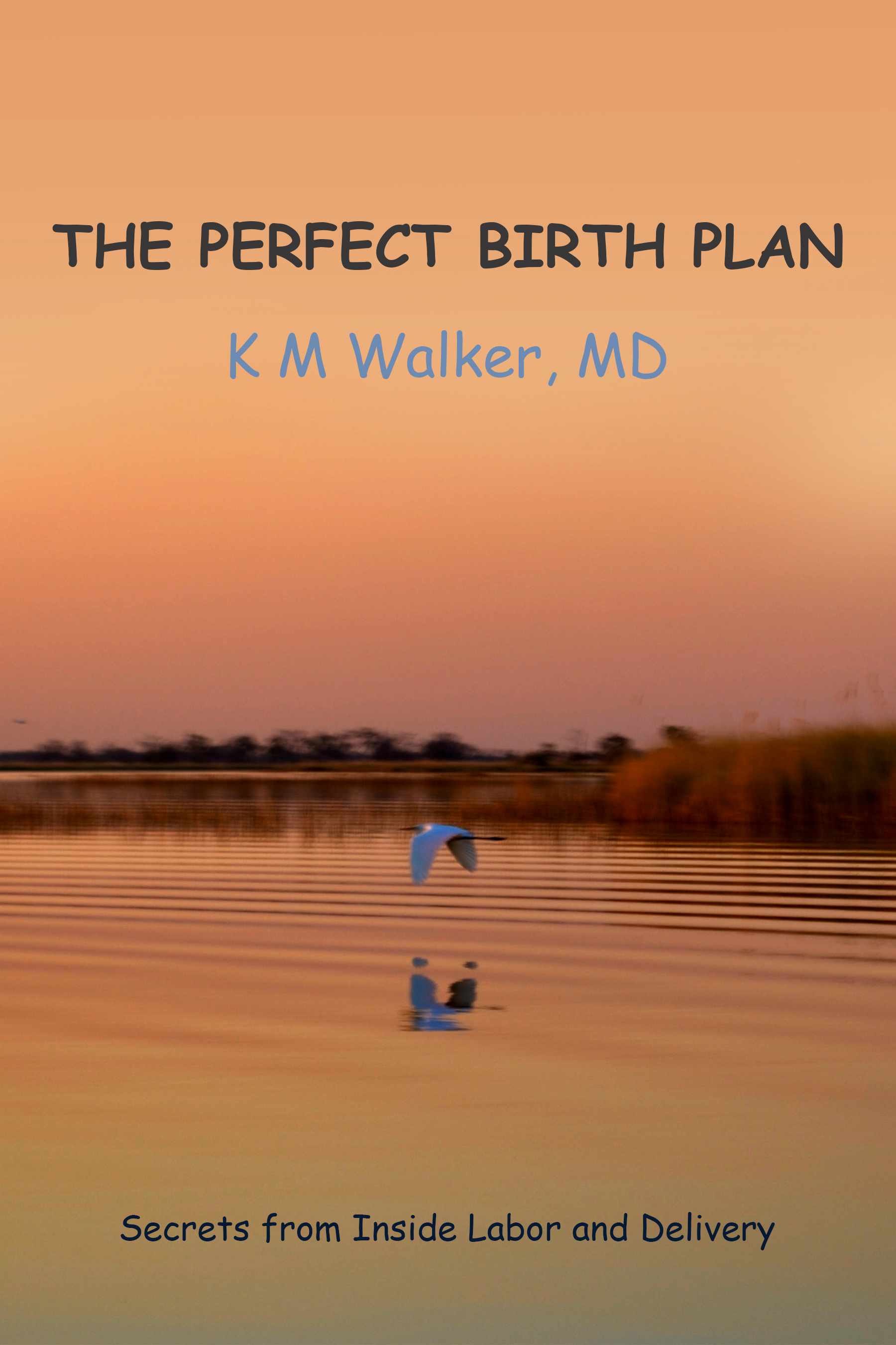 The Perfect Birth Plan: Patient Handout